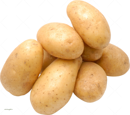 Picture of Potato ( Large )