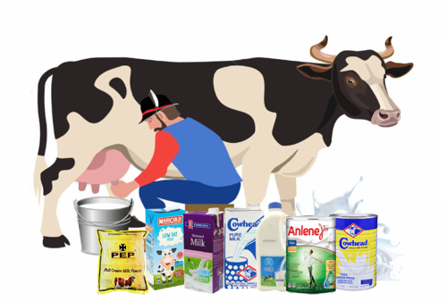 Picture for category Milk & Other Milk products