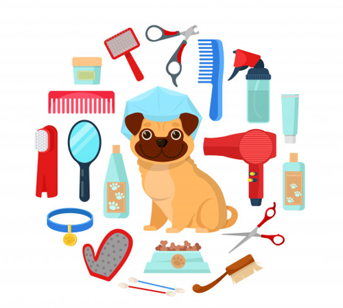 Picture for category Pet Care Products & Accessories